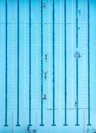 UCLA Swimmers
