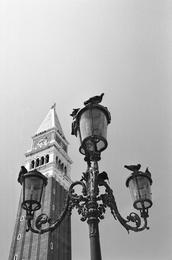 Lamp Post 2, Venice