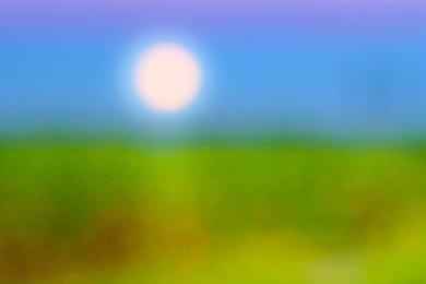 Sugarcane Moon