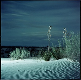 Bright Night at White Sands