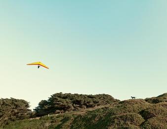 Glider & Dog