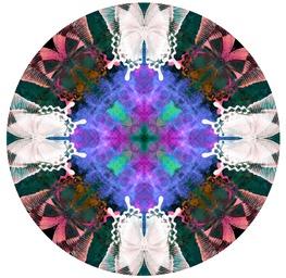 Circle 104