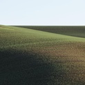 Palouse Hills VIII