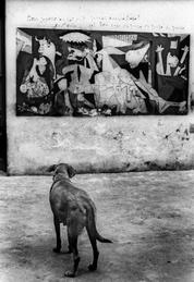 Guernica Dog