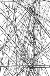 Sea Grass Abstract
