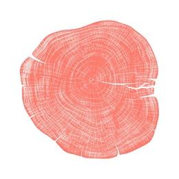 Stump 1 - Variation 24
