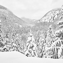 The Valley - Whistler