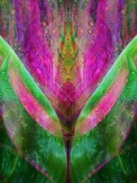 Pink Tulip [Vert]
