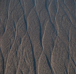 Lines on the Sand