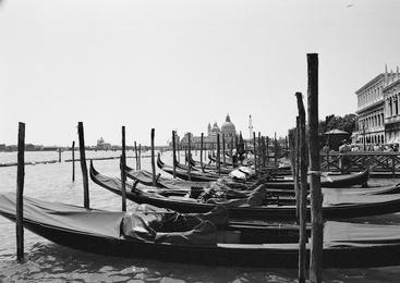 Docked Gondolas, Venice, Italy