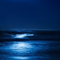 Blue Moonlight