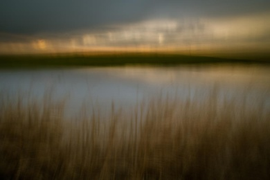 Marsh Light 6