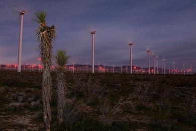 The Wind Farm #3