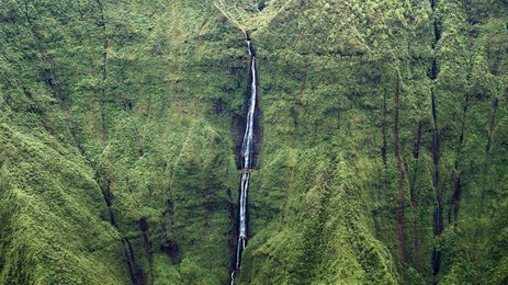 Paradise Fall - Kauai