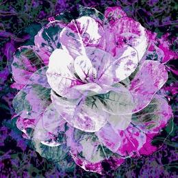 Antique Flower [SQ]