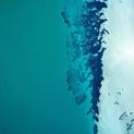 The Unique Coast 05