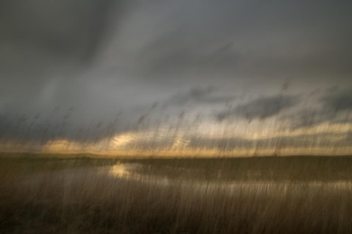 Marsh Light 5