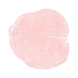Stump 1 - Variation 28