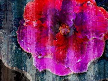 Jeans Flower [Hor]