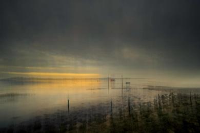 Marsh Light 7