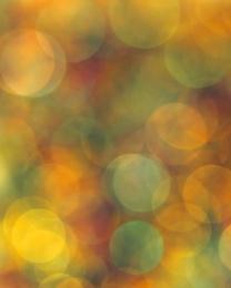 Golden Spangles
