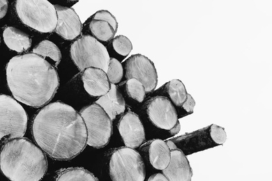 Wood Pile III