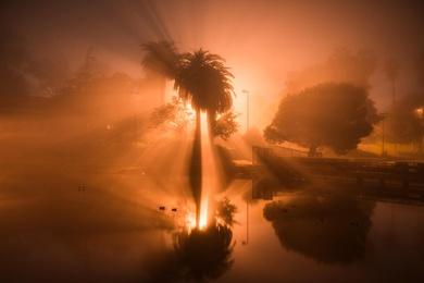 Hollenbeck Glow #1