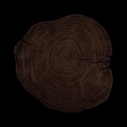Stump 1 - Variation 16