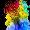 Chrysalis Spectrum