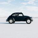 Black Beetle II