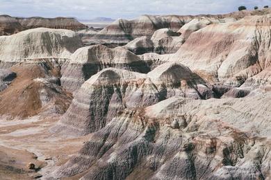 Painted Desert Study XV