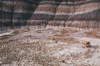Painted Desert Study XX