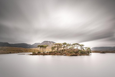 Pines Island - Derryclare Lough, Co. Galway