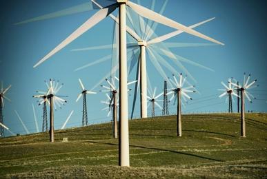 The Wind Farm #5