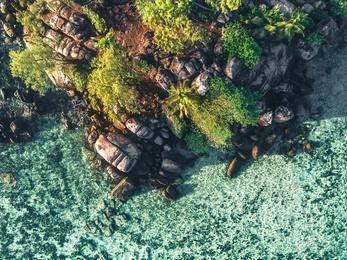 Endangered Paradises 10