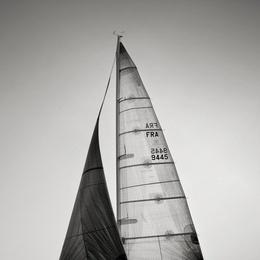Sail Abstract X