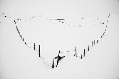 Stark Snowscape #1