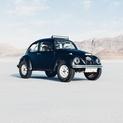 Black Beetle I