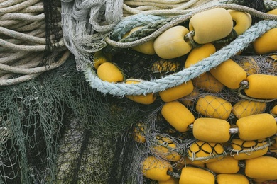 Fishnet Series #14
