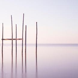 A Delicate Dawn