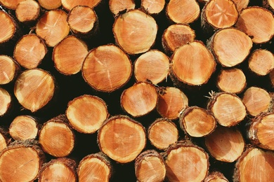 Wood Stack VI