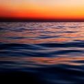 Sea of Cortez III