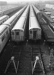 Yard of Trains