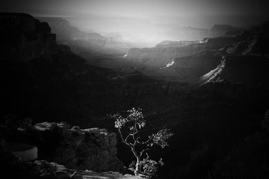 Mather Point View