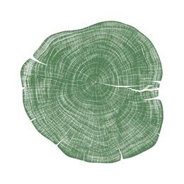 Stump 1 - Variation 6