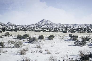 New Mexico Winter