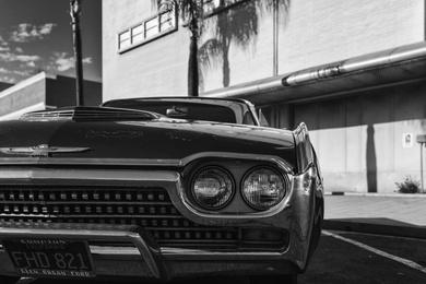 Urban Thunderbird