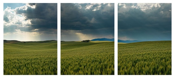 Storm Over Palouse Triptych