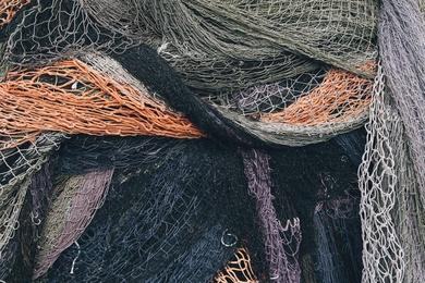 Fishnet Study X