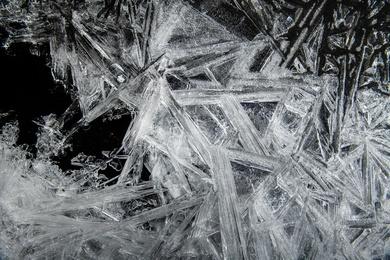 Ice Sculptures #1